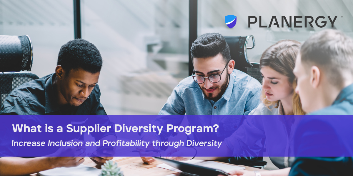 What is a Supplier Diversity Program